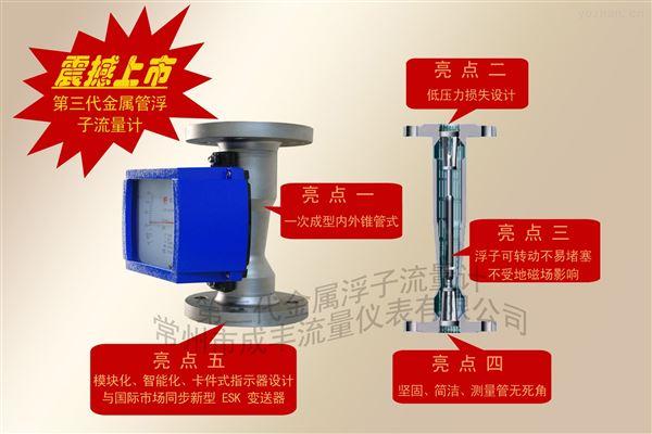 包邮包税液体金属管浮子流量计安装形式可选