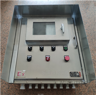 BXB可视双门带锁防爆柜 防爆触摸屏电柜