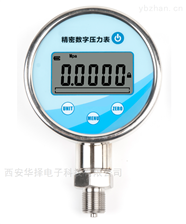 HZ-100G高精度数显压力表
