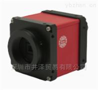 KOWA兴和光学内窥镜平面镜测量用品