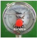 YXC-100YXC-100电接点压力表