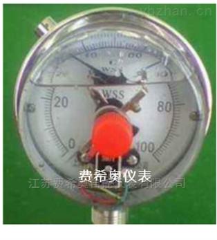 选型供应WSSXN系列防震双金属温度计