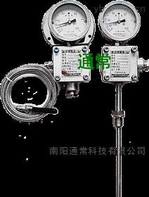 WTZd-285z-防爆溫度表