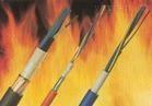 BPVVP耐高温防火电缆厂家