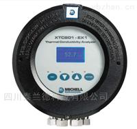 XTC601 纯度分析仪 氢气 CO2 NH3 H2