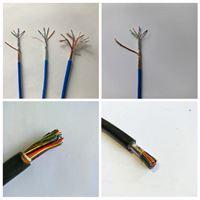 SC/RC耐高溫熱電偶補償導線