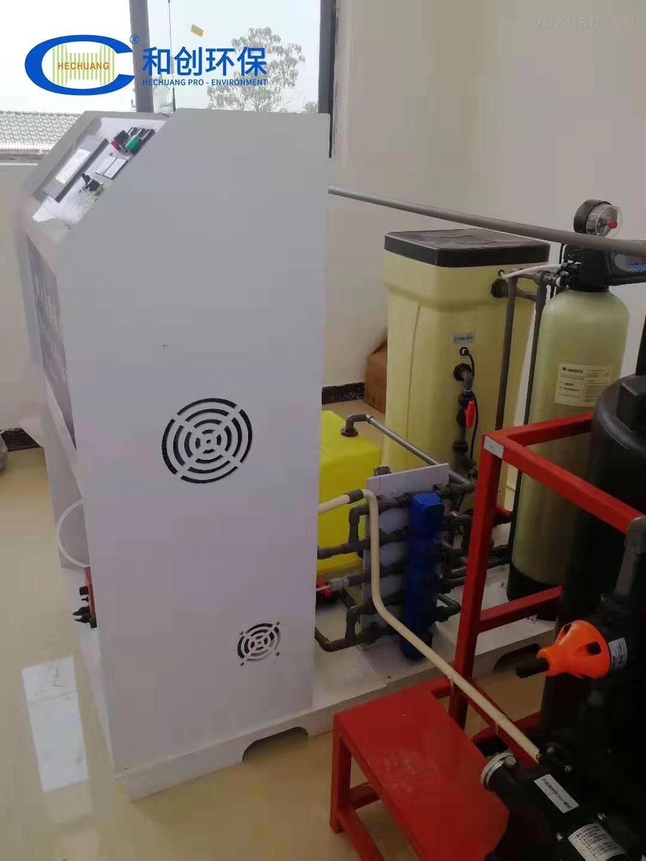 江西水廠消毒設備/500g次氯酸鈉發生器廠家