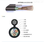 現貨GYXTW2-12芯中心束管式光纜