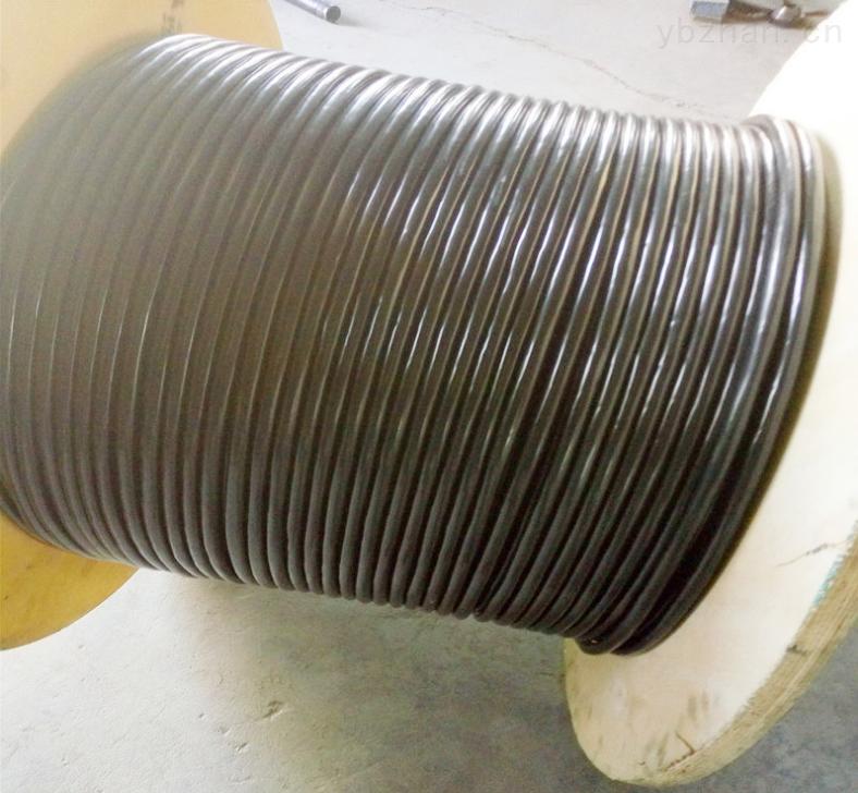 ZRC-KVVP2-22屏蔽鎧裝控制電纜
