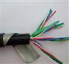 鐵路信號電纜PZYAH22國標包檢測