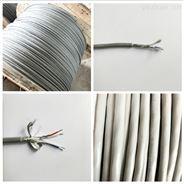 BELDEN1419A-百通(Belden)低容計算機電纜