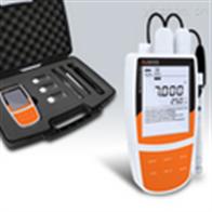 Bante904P般特BANTE便携式电导率溶解氧仪