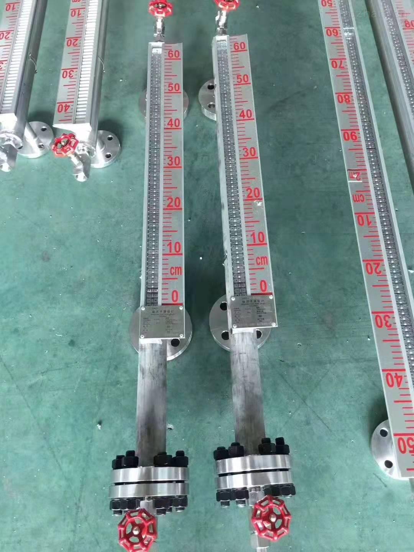 側裝型防腐重錘浮標液位計