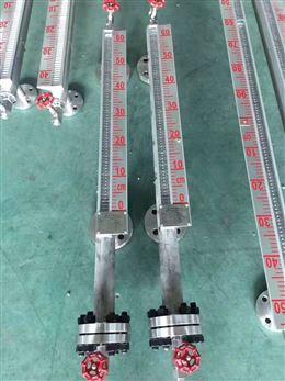 侧装型防腐重锤浮标液位计