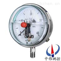 YXCG-100抗振磁簧电接点ya力表