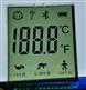 额温计耳温计液晶显示屏开模订做批量生产