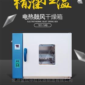 101-00*大型电热恒温鼓风干燥箱