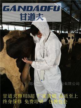 牛用B超兽用B超检测母牛子宫炎症囊肿方法