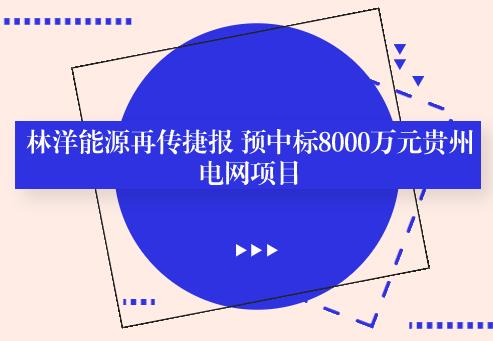 林洋能源再传捷报 预中标8000万元贵州电网项目
