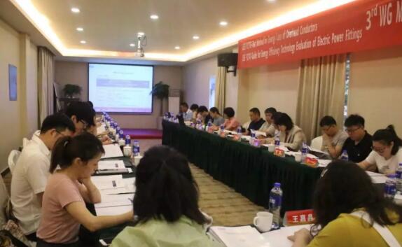 IEEE两项国际标准第三次工作组会议召开