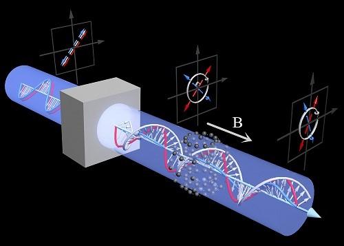 武汉物数所芯片原子磁强计研究取得进展
