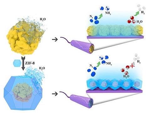 ZIF-8包覆納米多孔金復合材料用于高效電催化固氮