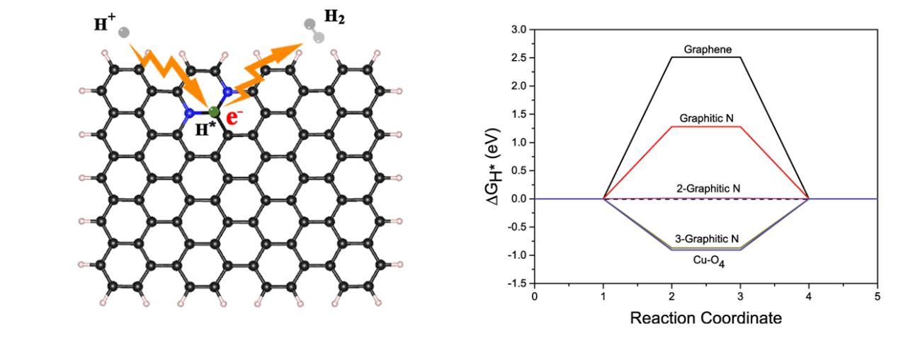 中国�U�大在碳基催化剂电催化析氢研�I�中取得�q�展