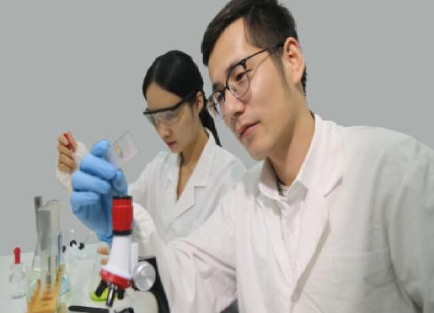 《自然》新研究:科學家造出具有超高壓電性的透明晶體