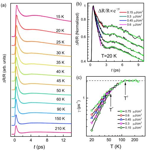 重费米子体系中杂化动力学的理论研究与实验探测获进展