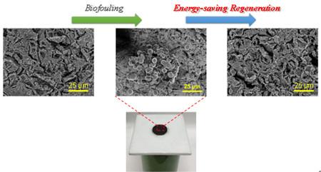 青岛能源所开发功能钙钛矿氧化物多孔膜及节能再生技术