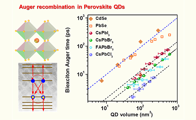 大連化物所揭示鈣鈦礦量子點激子復合與自旋馳豫的規律