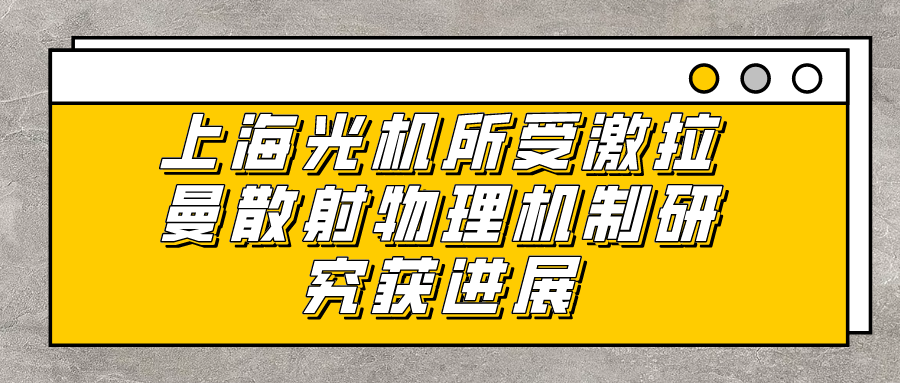 上海光机所受激拉曼散射物理机制研究获进展