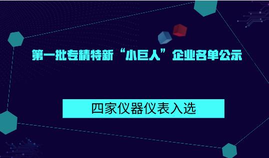 """第一批专精特新""""小巨人""""企业名单公示 四家仪"""