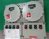 智能电动机监控器防爆配电箱